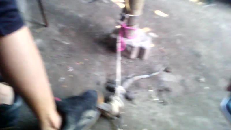 Ataque de Garrobo - Lourdes Colon El Salvador 2016(720P_HD).mp4