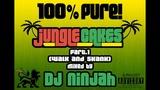 100 PURE! Jungle Cakes Part .1 ''Walk and Skank'' Mixed by Dj Ninjah 16.01.13 FD