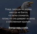 Александр Калашниченко фото #5