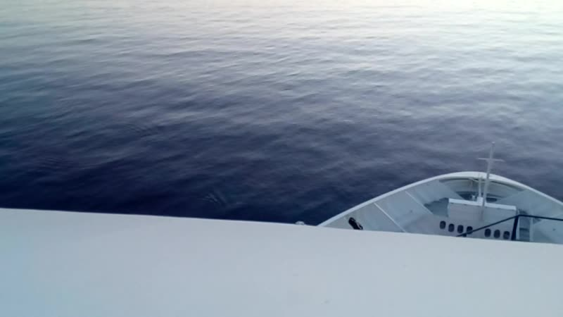 Дельфины у носа нашего лайнера в Гибралтарском проливе