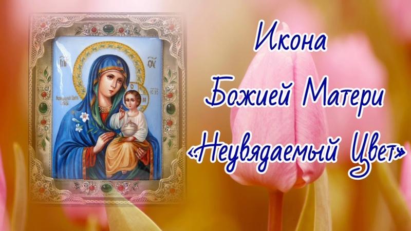 Икона Божией Матери «Неувядаемый Цвет» - празднование 16 апреля.