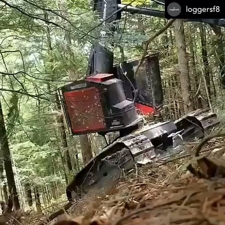 """Loggers_sweden on Instagram """"Posted @withrepost • @loggersf8 Repost @myloggermag ✔ @timberpro_joe showing his skills and experience steadying this..."""