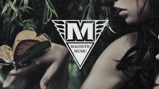 Magnetic Music - Butterfly /Ty dolla sign / Drake / The weekend