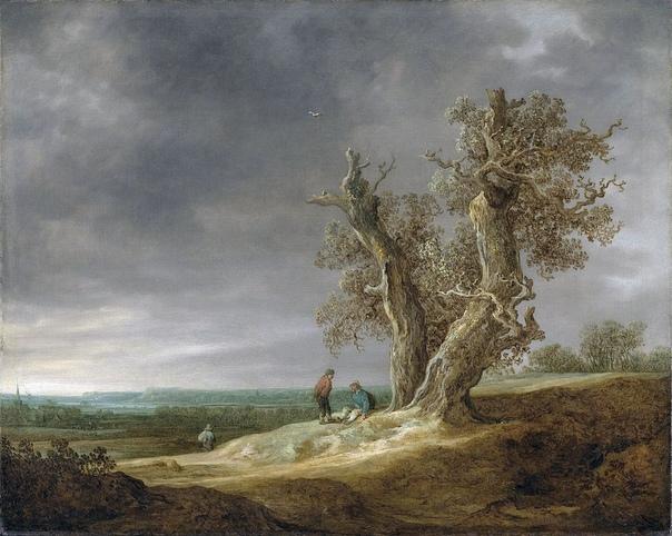Ян ван Гойен (нидерл. Jan Josephsz. van Goyen vŋˈɣoːjə(n), 13 января 1596, Лейден 1656, Гаага) нидерландский художник-пейзажист, рисовальщик, офортист XVII века. Вместе с Саломоном ван Рёйсдалом
