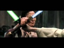 Crouching Tiger Swinging Lightsabers