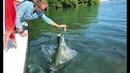 Coole Videos 394: 🐠🐟 Fütterung Der Fische / Feeding the Fish 🤦♂️ || ✪ Stern DuTube