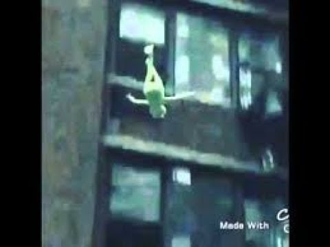 Kermit the Frog falls off roof vine