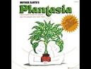 (Mother Earth's) Plantasia -- Mort Garson (1976) Full Album