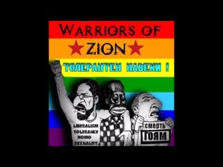 Warriors of zion - afa fighters
