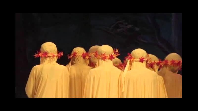 балет-сказка Гадкий утенок театр танца Серебряные нити г.Пермь 2013 г