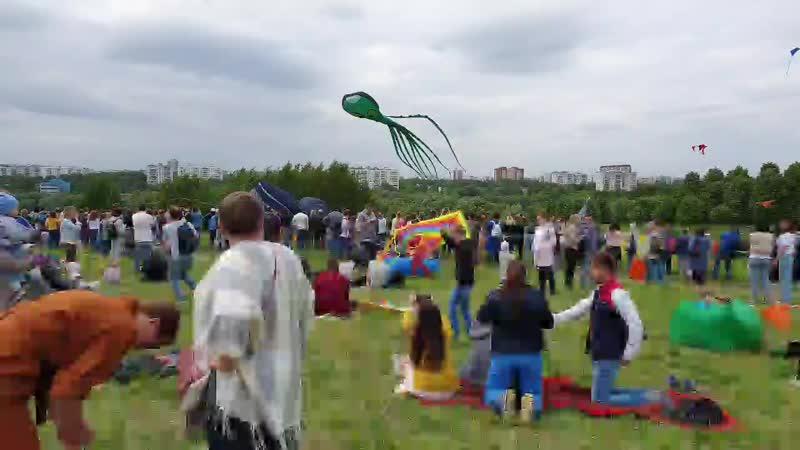 фестиваль летающих змеев
