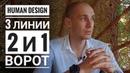 Дизайн Человека 2 и 1 ворота 3 линии Даниил Трофимов Human Design