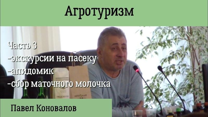 Пчеловод-промышленник Павел Коновалов. Агротуризм, сбор маточного молочка.