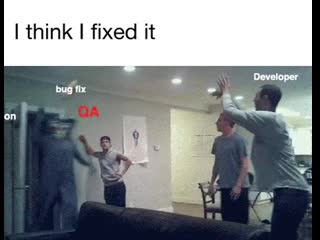 Production-developer-think-i-fixed-it-guy-bug-fix-i-