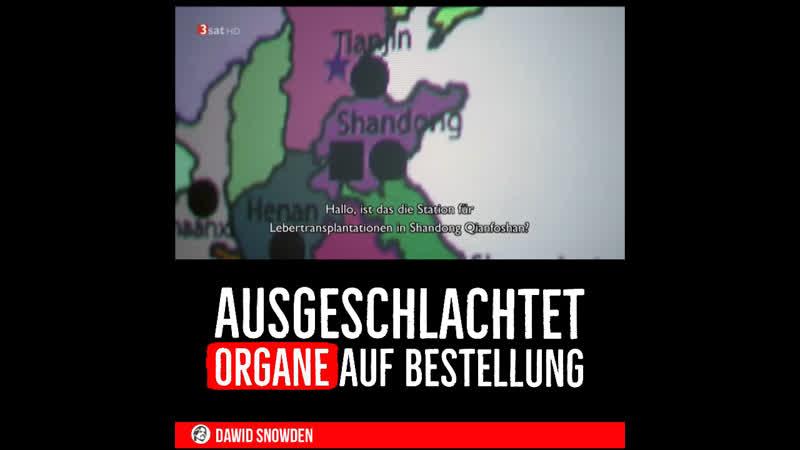 ||59| Ausgeschlachtet ~ Organe auf Bestellung