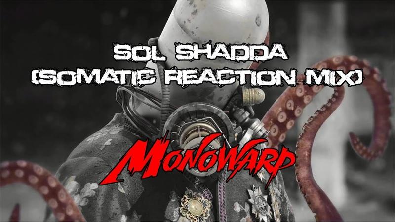 Sol Shadda - Monowarp (Somatic Reaction Mix) | bigbeat breaks hard_rock prog_rock instrumental