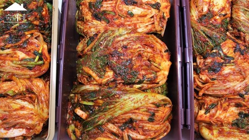 김장김치 맛있게 담그기, 배추절이기, 김장김치 양념만들기(Korean Kimchi Recipe eng sub)ㅣ숙이