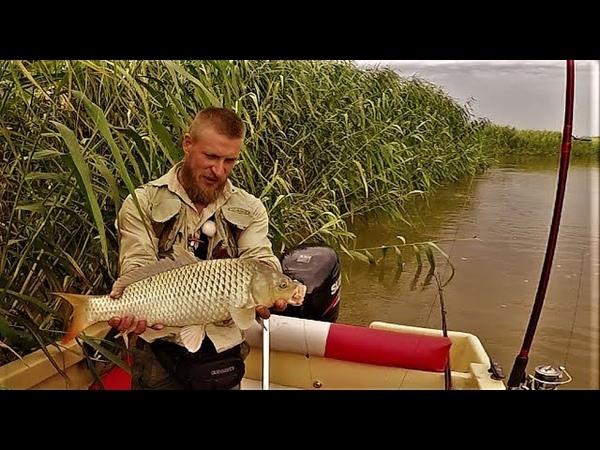 Настоящая Рыбалка Простая Снасть На Сазана Макуха И Кукуруза Закидушка Донка Часть 1