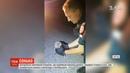 Пугач сонько литовські поліцейські врятували пташеня що заснуло посеред дороги