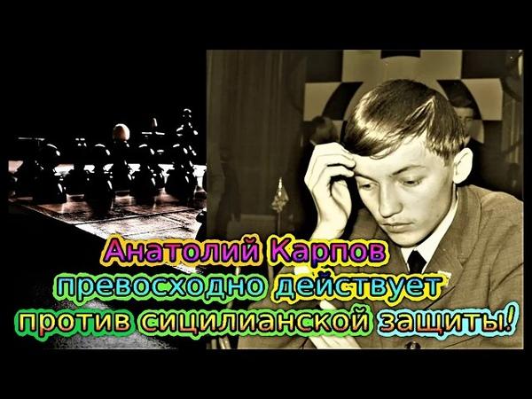 Великолепная партия 12 чемпиона мира Анатолия Карпова. Против варианта дракон,в сицилианской защите.