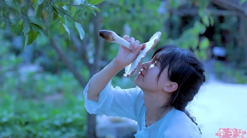 How to make a Chinese delicious mushroom meal? 甚于肉味的治愈美食,带些雨露的清甜——鸡枞菌 Liziqi channel
