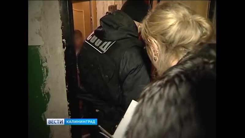 В Калининградской области на охоту за должниками по алиментам вышли судебные приставы