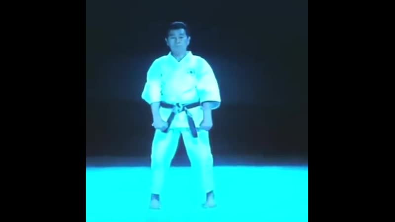 SEIRYU -青柳- (Aoyagi) ejecutado por Sensei Kiyoshi Yamazaki 9no Dan Shindo Jinen Ryu, Chief Instructor Overseas JKR.