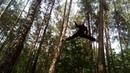An exercise between the trees un ejercio entre los arboles