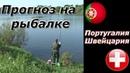 Рыбалка на кормушки Прогноз на Лигу Наций Португалия Швейцария Розыгрыш 500 р