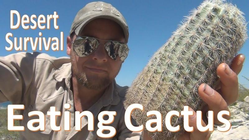 Cactus Eating -Desert Survival- Food Water