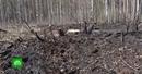 Ошибочка вышла: в Латвии военные случайно обстреляли участок местного жителя