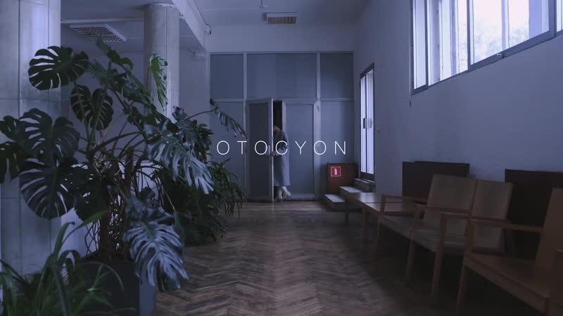 OTOCYON GRAND