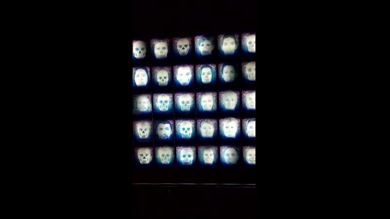 Жизнь быстротечна - необычная инсталляция в музее Мехико
