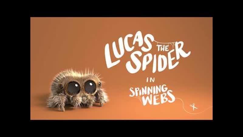 11. Паук Лукас Вращающиеся паутины Lucas the Spider