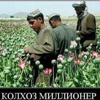 Анкета Артур Камалов