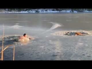 Житель нью-йорка спас двух собак, провалившихся под лед