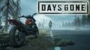 Days Gone-Жизнь После Letsplay №10 Playstation 4