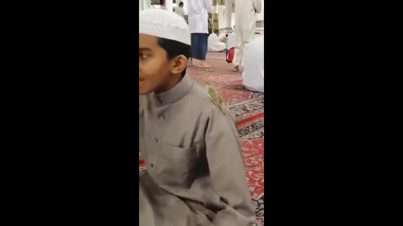 ма шаа Ллах. Птичка села на плечо парня, чтобы послушать чтение Корана в мечети Пророка (мир ему)
