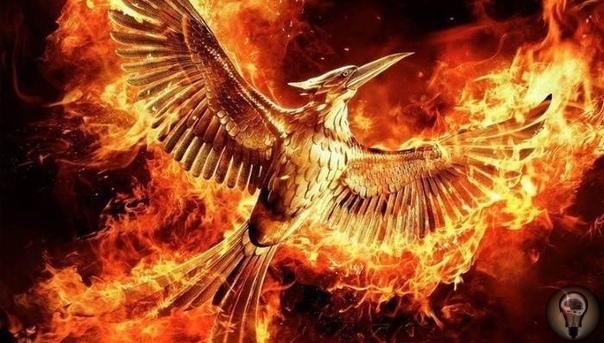 Тайна Огненных птиц Сан-Хуана Страшные пожары небывалого размаха стали насущной проблемой жителей Сан-Хуана, столицы Пуэрто-Рико, и близлежащих городов в 80-е годы XX столетия. Ни власти