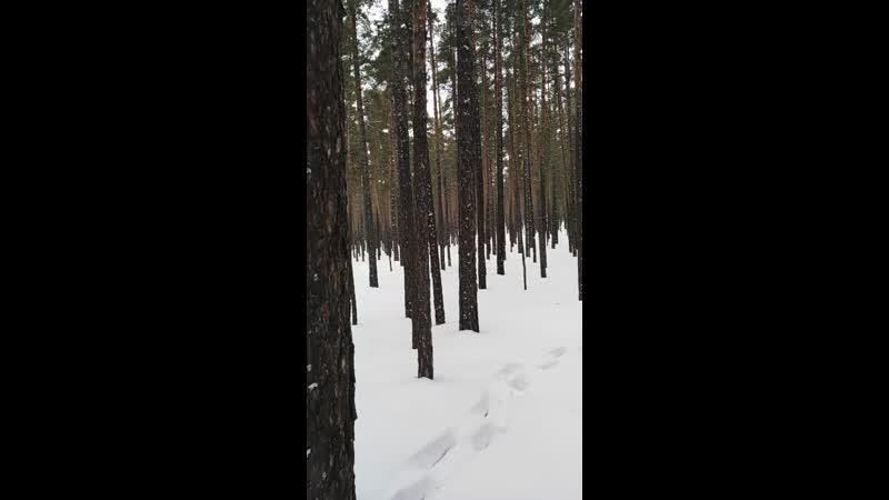 Ақмола облысы, Щучинск санаториясы 12.03.2019