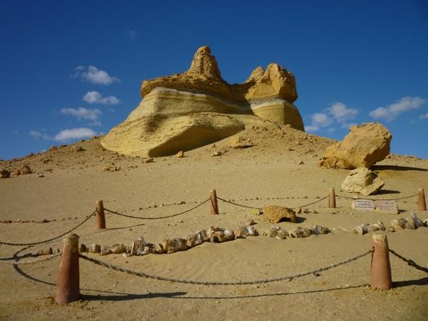 Долина китов в Египте  скелеты гигантов посреди пустыни Сахары