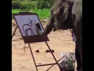 Художник-слон 🐘🖌😊