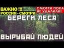 Как Путинские чиновники распродают Российский лес в Китай Беззаконие и вседозволенность
