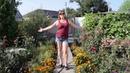 Я танцую и поливаю цветы Желаю такого же счастливого и позитивного утра