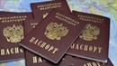 Директор МФЦ России развеял слухи об особых паспортах РФ жителям ДНР и ЛНР