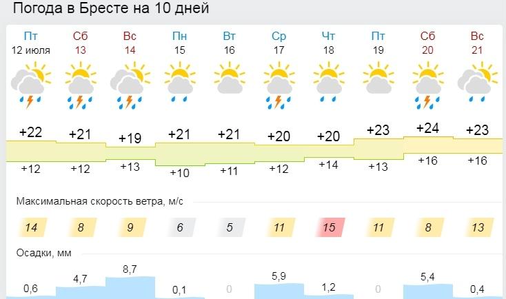 «Так холодно в середине лета не было 20 лет». Белгидромет рассказал о погоде в выходные