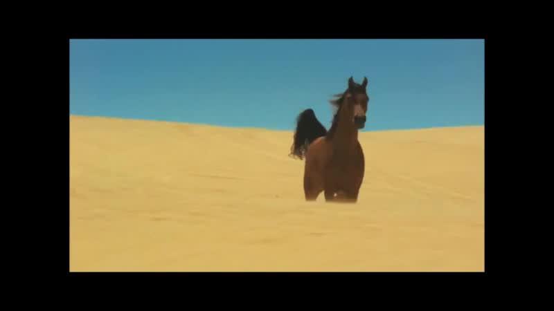Бегущие лошади, табун..Красота!_VIDEOLENT.RU.mp4