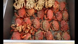 Fish and Cook - Crab Fishing Crabbing Newport Oregon