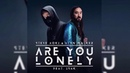 Steve Aoki Alan Walker - Are You Lonely (feat. ISÁK)