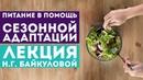Питание в помощь естественным механизмам сезонной адаптации организма Лекция Н Г Байкуловой